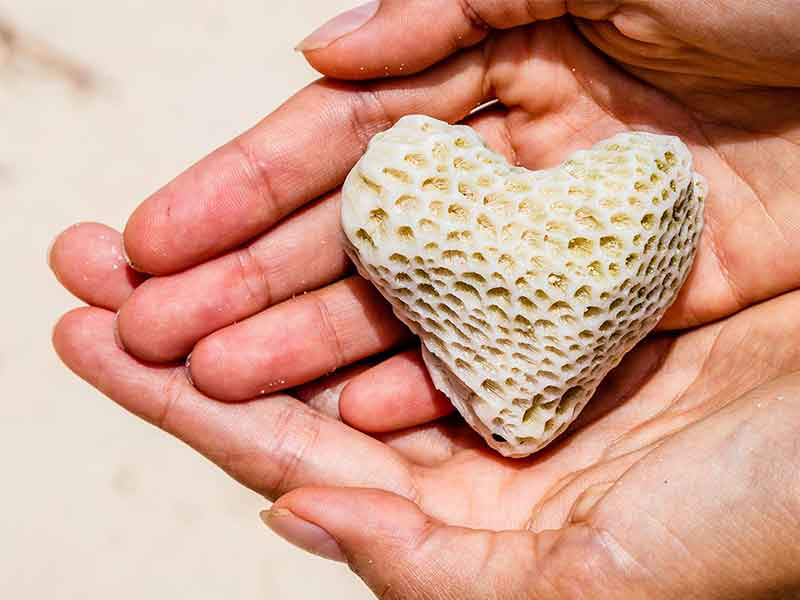 coral calcium health benefits